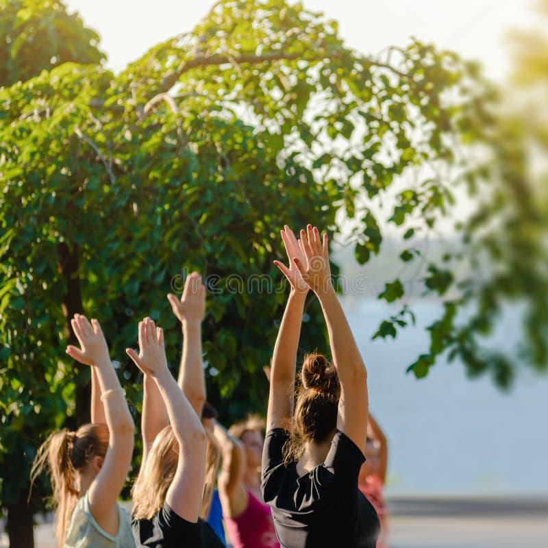 Yogaklasse in park royalty-vrije stock foto