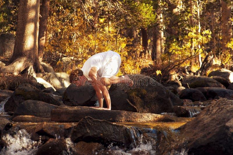 Yogakran arkivfoto