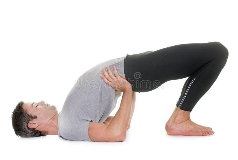 Yogaman i studio royaltyfria bilder