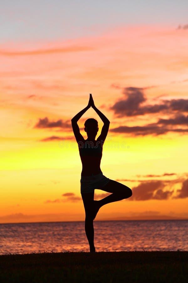 Yogavrouw de opleiding in zonsondergang in boom stelt stock foto's