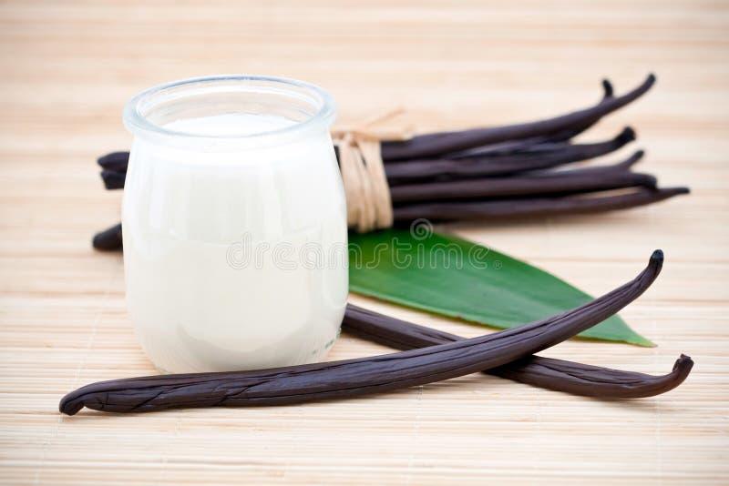 Yoghurt en verse vanillebonen royalty-vrije stock foto's