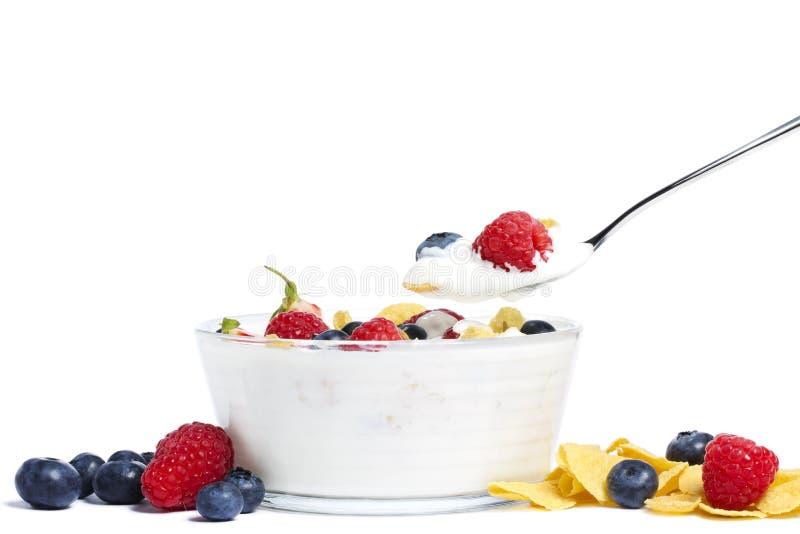 yoghurt för blåbärhallonjordgubbar fotografering för bildbyråer
