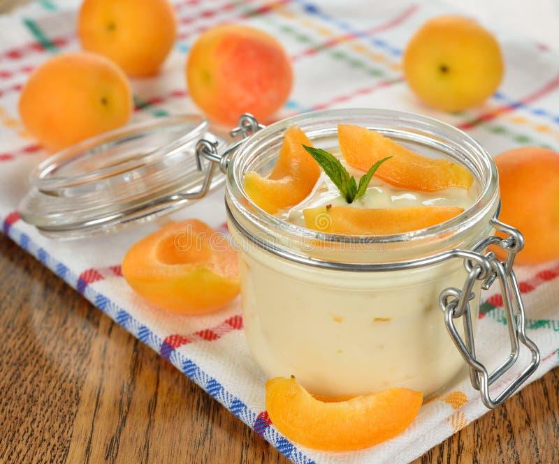 Yoghurt med aprikors arkivbild