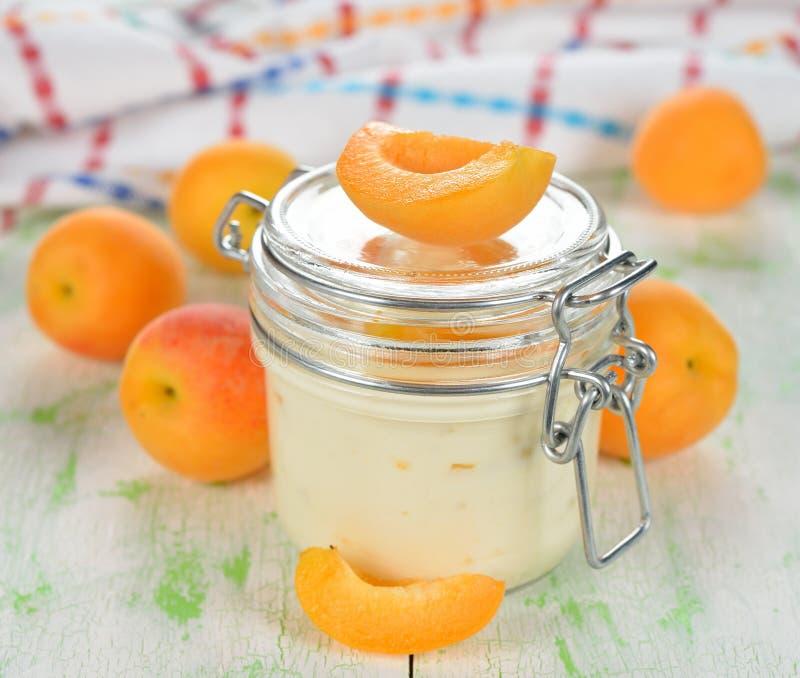 Yoghurt med aprikors fotografering för bildbyråer