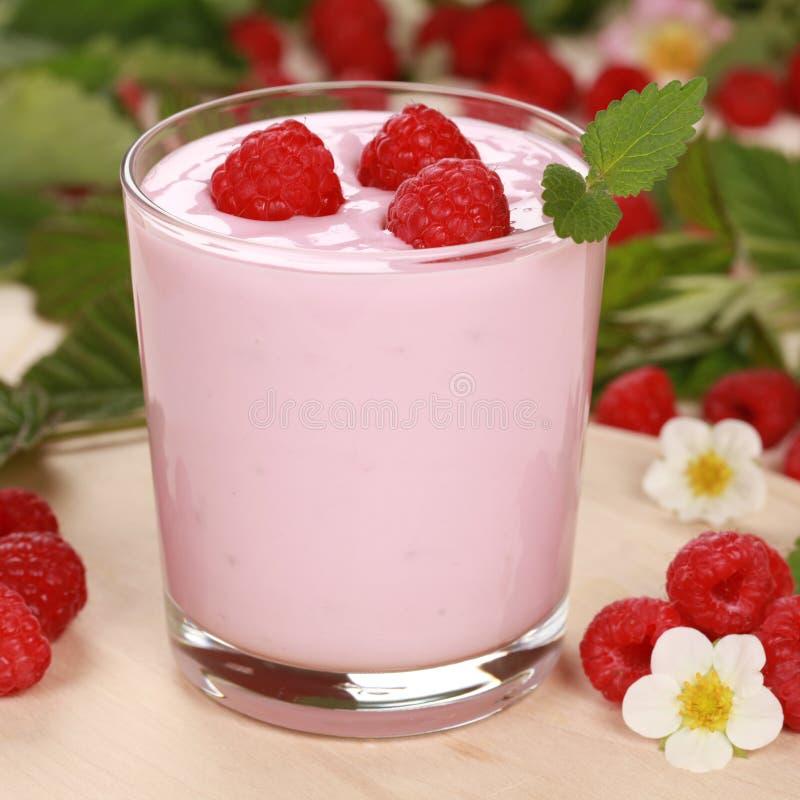 Yoghurt med hallon royaltyfri fotografi