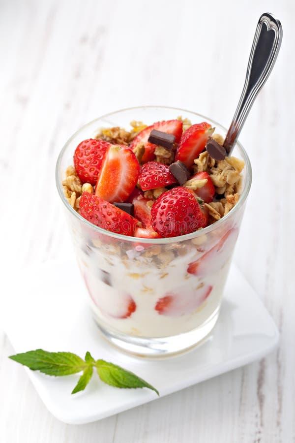 Yoghurt med mysli arkivfoto
