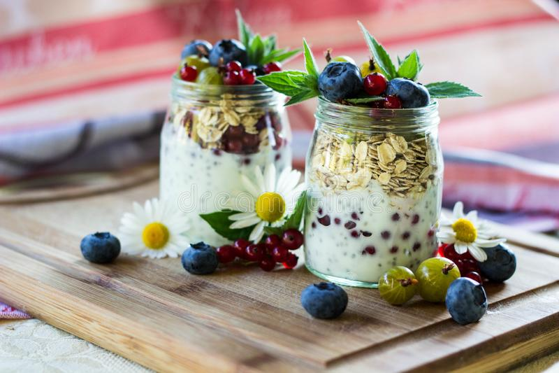Yoghurt met chiazaden, havermeel en verse vruchten royalty-vrije stock foto