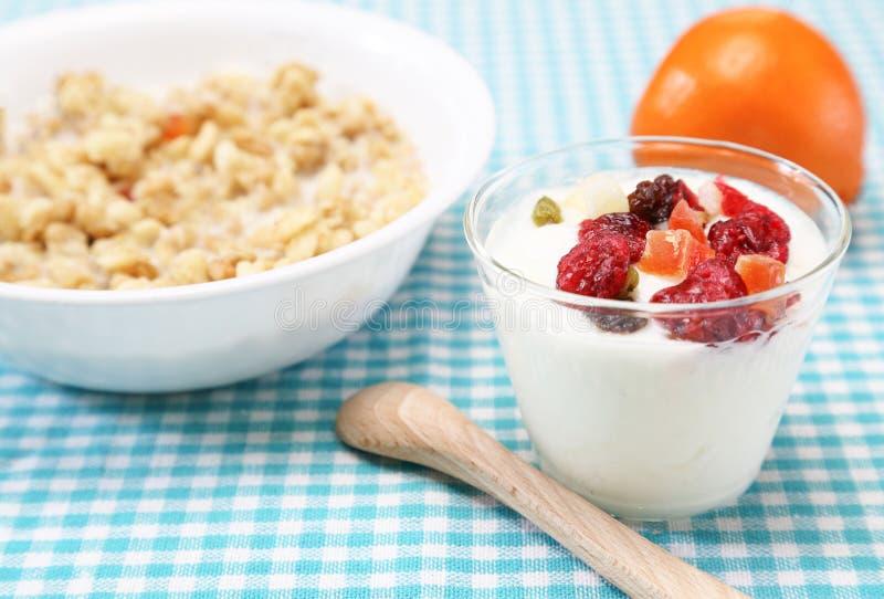 Yoghurt met droge vruchten royalty-vrije stock afbeeldingen