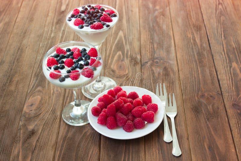 Yoghurtefterrätt med hallon och blåbär royaltyfri bild