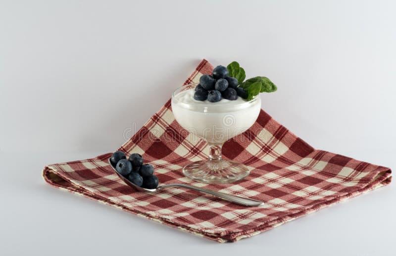 Yoghurtefterrättkopp med blåbär på röd plädservett fotografering för bildbyråer