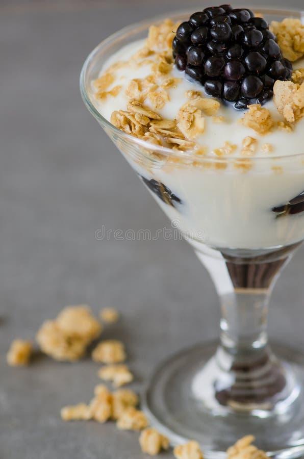 Yoghurtparfait stock afbeelding