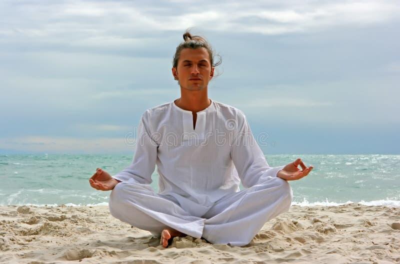 yogi пляжа стоковые фото