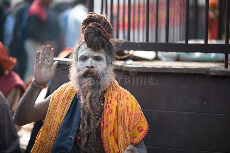 Yogi stock foto