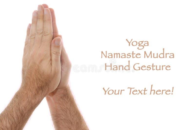 yogic för pos. för namaste för anjalihandmudra vitt arkivfoto