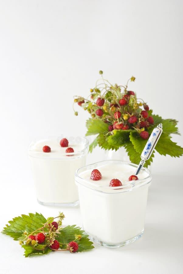 Yogur con las fresas salvajes imagen de archivo libre de regalías