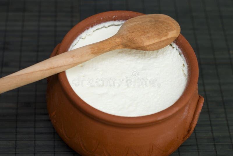 Yogur hecho en casa fotografía de archivo libre de regalías