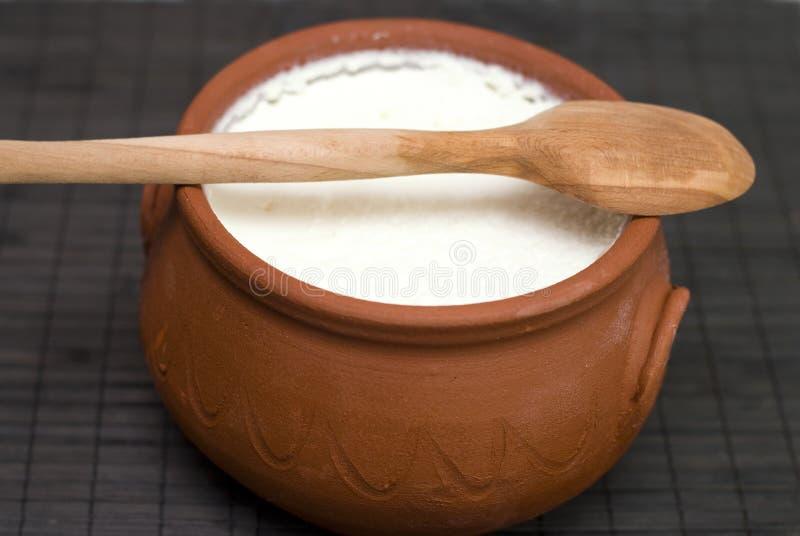Yogur hecho en casa fotografía de archivo