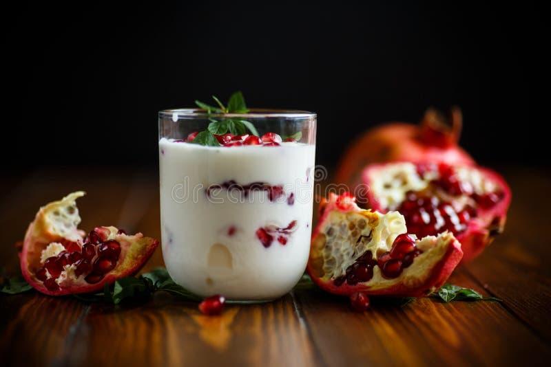 Yogur hecho en casa dulce con la granada fotografía de archivo libre de regalías