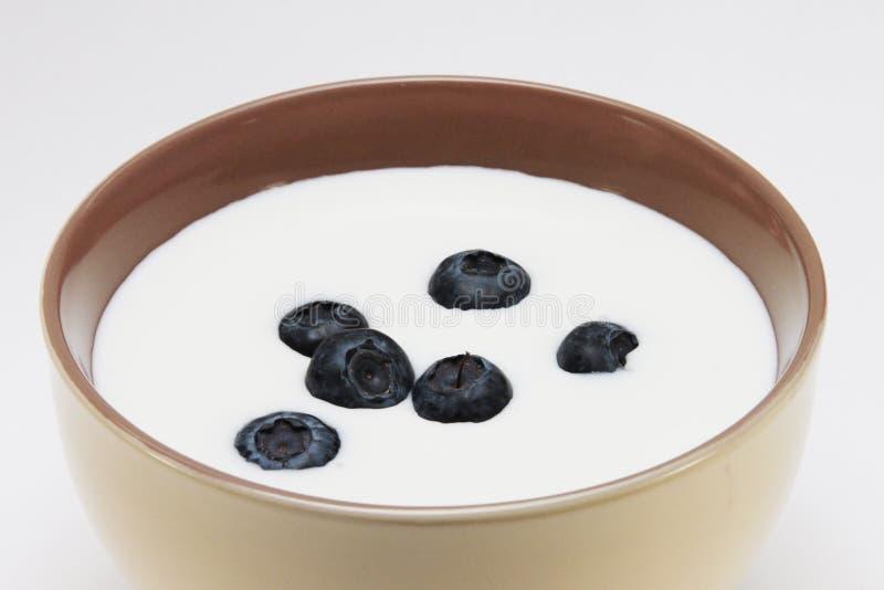 Download Yogurt with berries stock photo. Image of milkshakes - 39501538