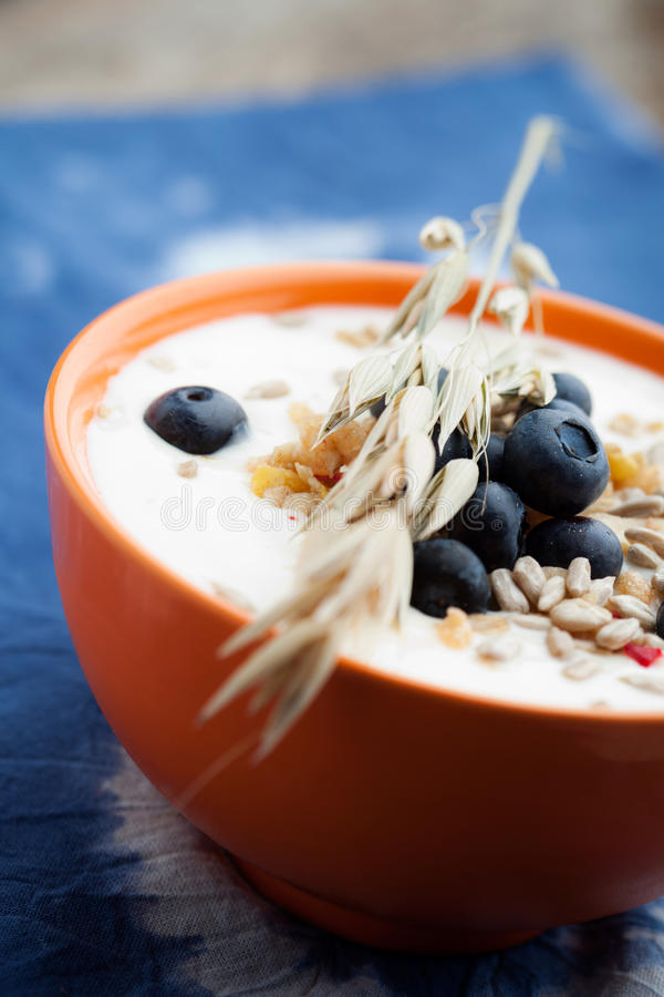Yogurt With Blueberries Royalty Free Stock Images