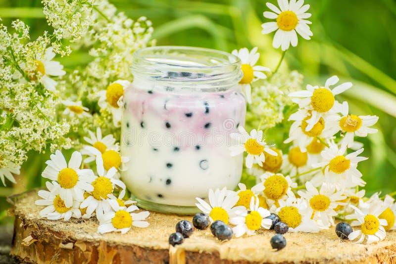 Yogurt casalingo con i mirtilli fotografia stock libera da diritti