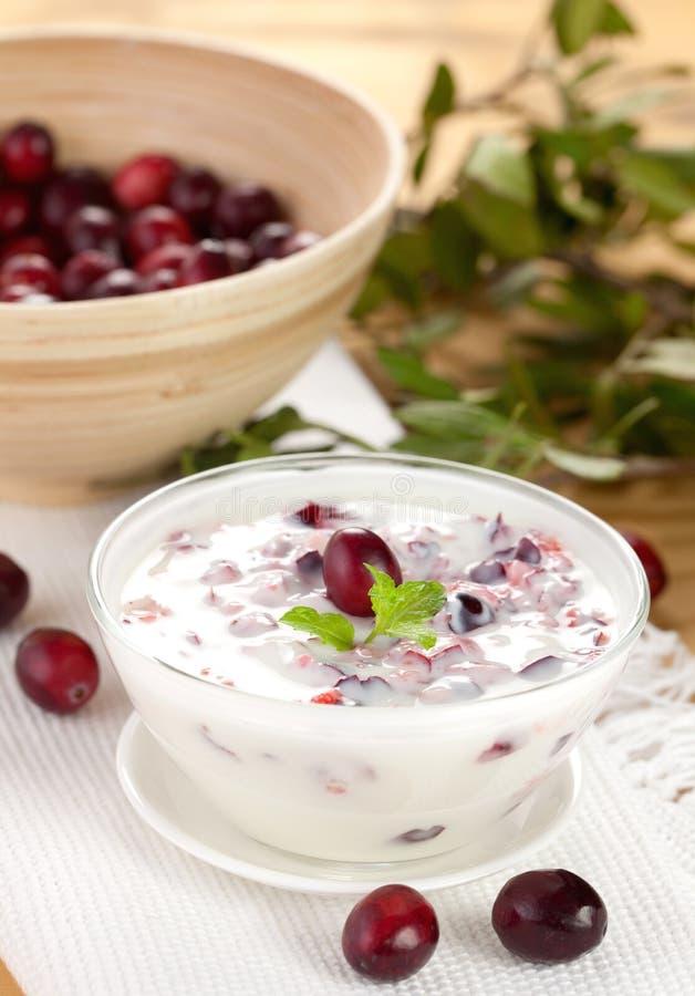 Yogurt com airelas fotografia de stock