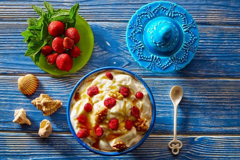 Yogurt con i dadi ed il miele rossi delle bacche immagine stock libera da diritti