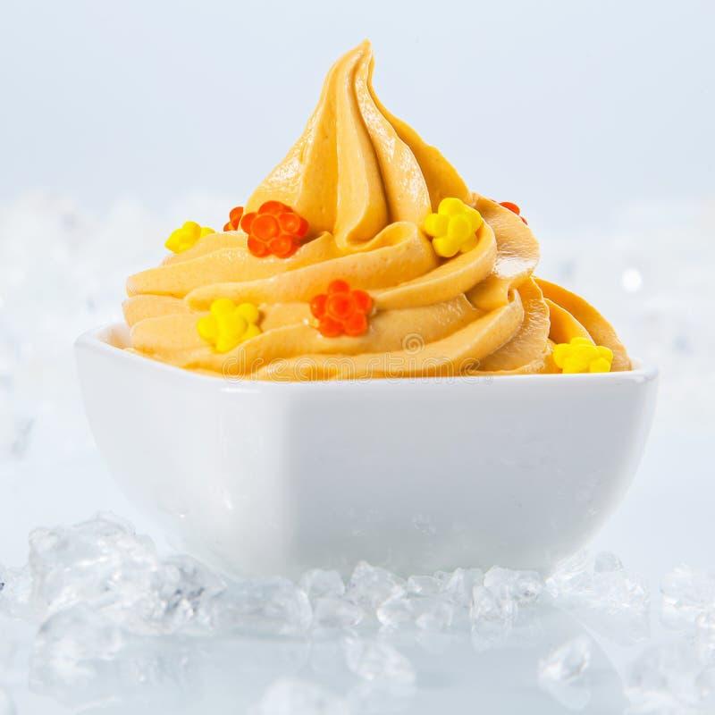 Yogurt congelato sano con le piccole guarnizioni sulla ciotola fotografia stock libera da diritti