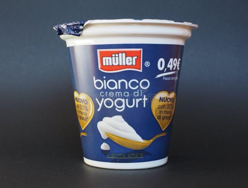 Yogurt di Mueller immagini stock libere da diritti