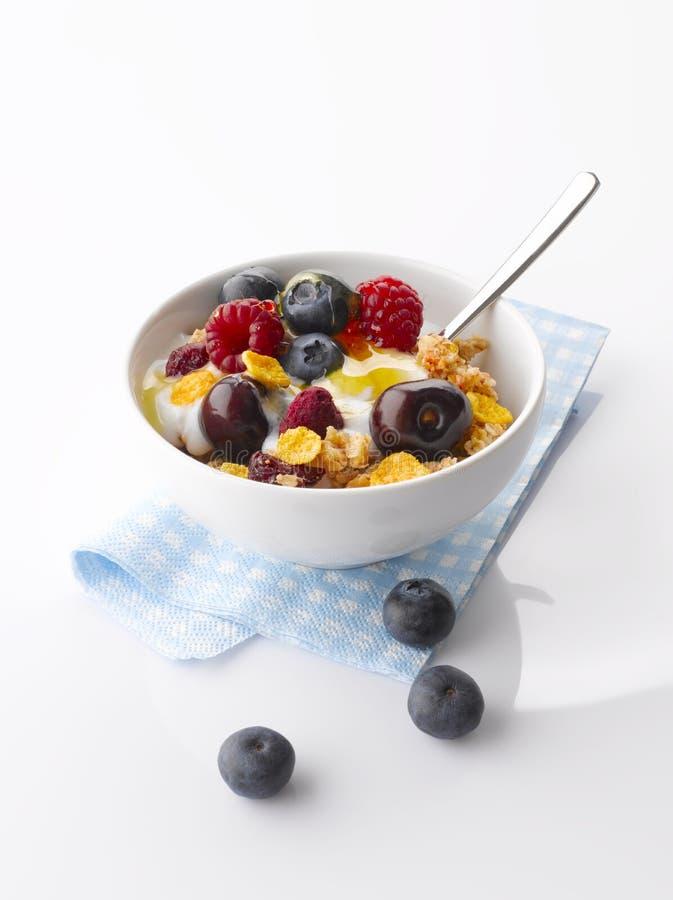 Yogurt with fresh Fruit and Granola royalty free stock images