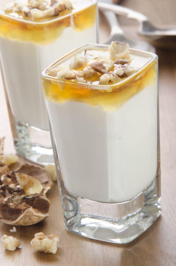 Yogurt greco con miele e le noci immagine stock