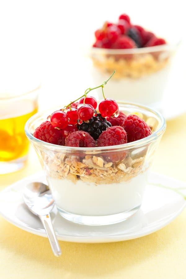 Yogurt, muesli, bagas e mel foto de stock royalty free