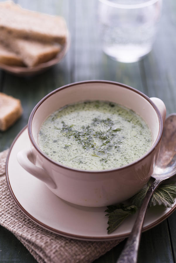 Yogurt and nettle cold soup. On green table royalty free stock photo