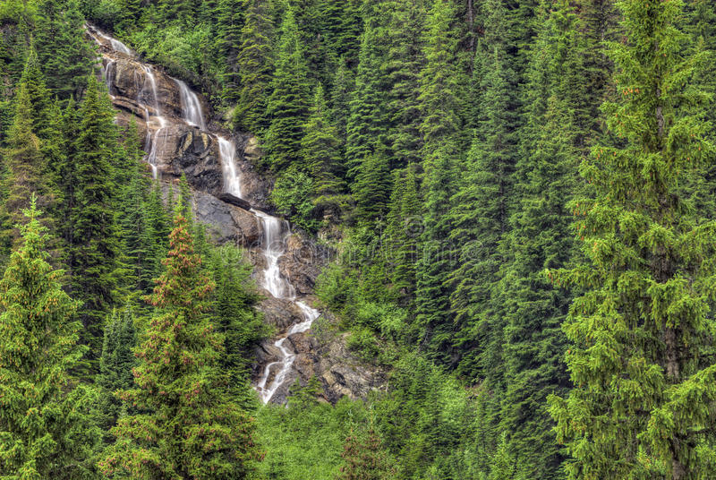 Download Yoho National Park stock image. Image of canada, waterfall - 21082261