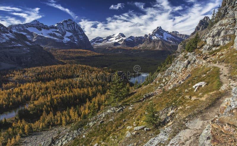 Yoho National Park Canadian Rocky Mountains Landscape royalty free stock photos
