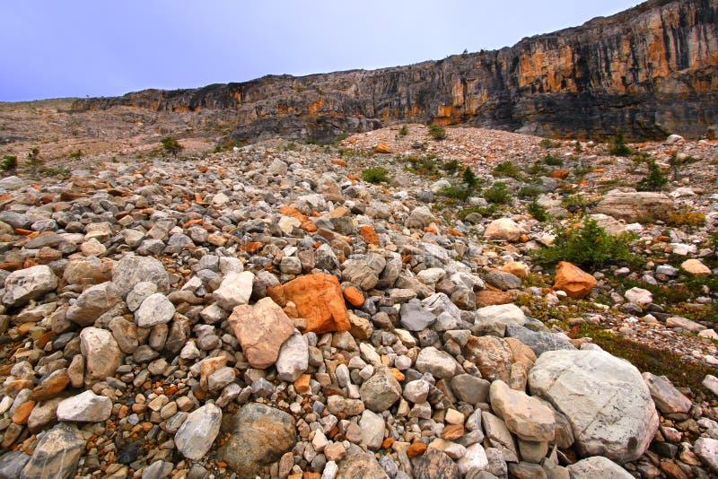 Yoho National Park Rocky Landscape royalty free stock image