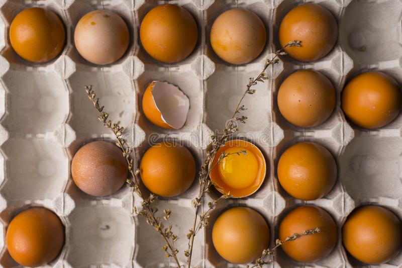 Yolk of broken egg in eggshell and several eggs in carton egg bo stock photos