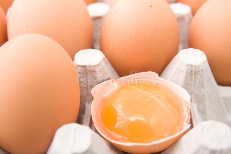 Yolk de ovos fotos de stock royalty free