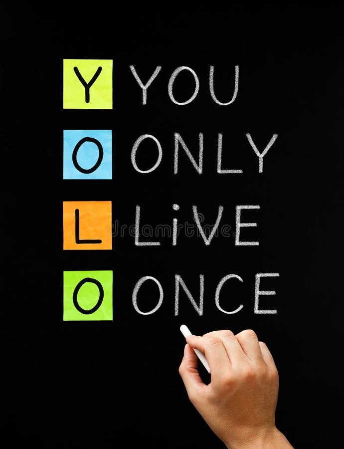 YOLO - Usted solamente Live Once fotos de archivo