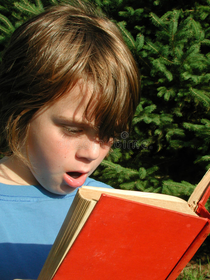 Yong Boy Reading Novel Stock Photos