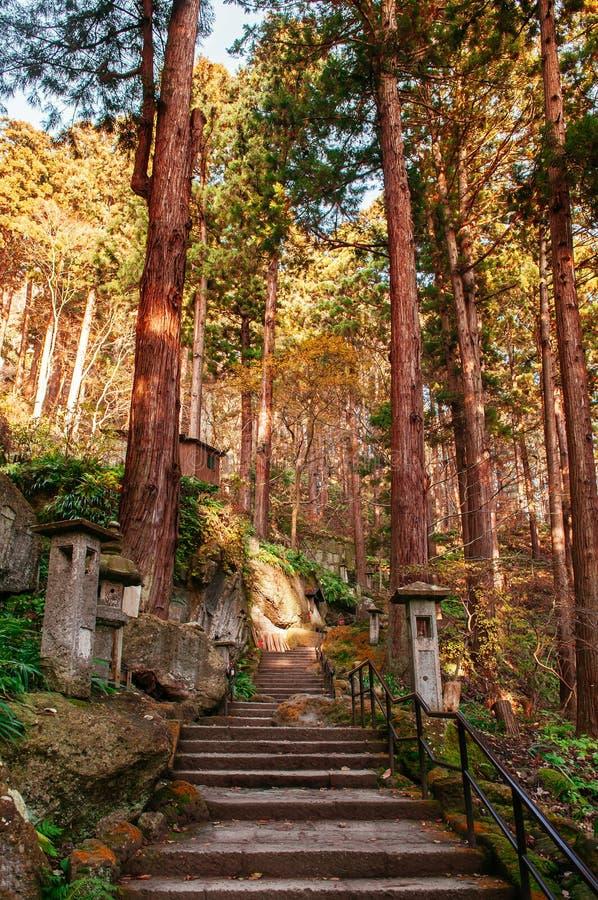 Yonsunmichi path in pine forest at Yamadera Risshaku ji temple, Yamagata - Japan. Yonsunmichi path in pine forest with evening light at Yamadera Risshaku ji stock photo