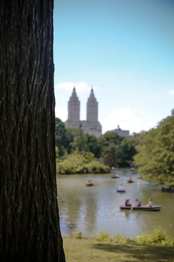 Центральный парк Нью-Йорк стоковое изображение