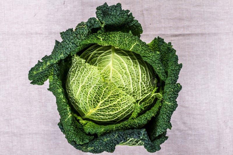 York cabbage royalty free stock image