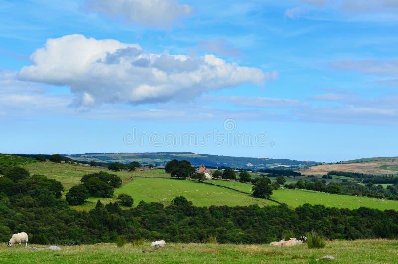 York del nord attracca il Yorkshire Inghilterra fotografie stock