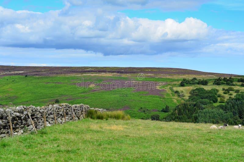 York del norte amarra Yorkshire Inglaterra foto de archivo