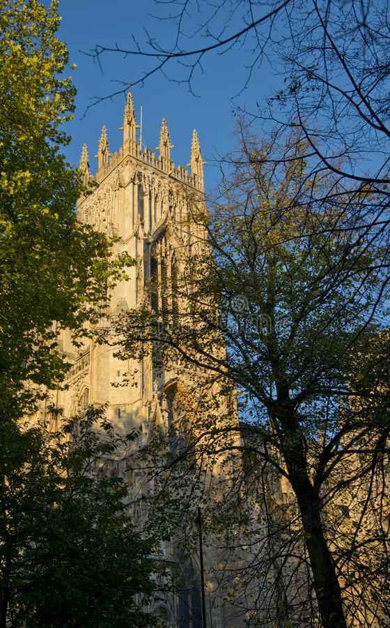 Download York Minster Royalty Free Stock Photo - Image: 35629155