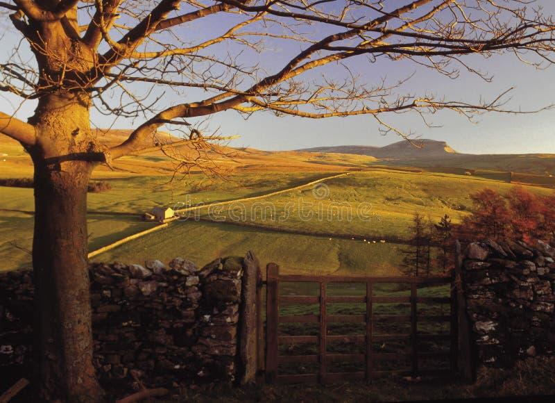 Yorkshire foto de stock