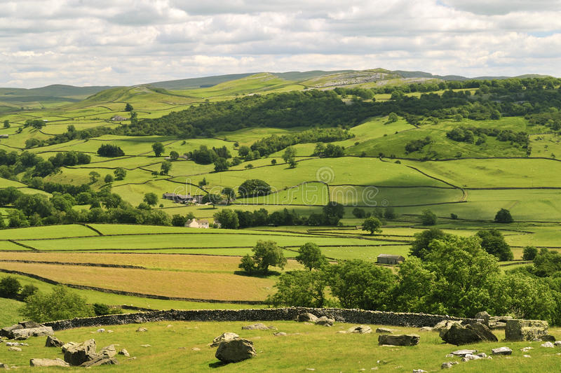 Yorkshire Dales, hay meadows royalty free stock images