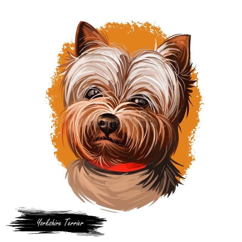 Yorkshire Terrier dog breed portrait isolated on white. Digital art illustration, animal watercolor drawing of hand drawn doggy royalty free illustration