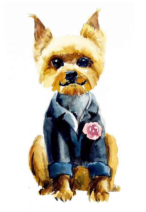 Yorkshire Terrier Dragen illustration f?r vattenf?rg hand royaltyfria foton